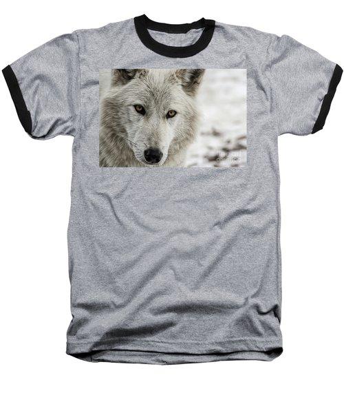 White Wolf II Baseball T-Shirt