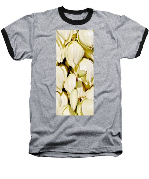 white Yucca flowers Baseball T-Shirt by Werner Lehmann