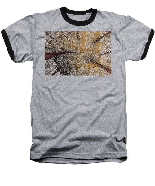 Baseball T-Shirt featuring the photograph Whiteout by Tony Beck