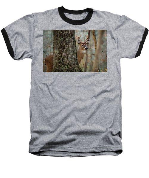 Whitetail #31 Baseball T-Shirt