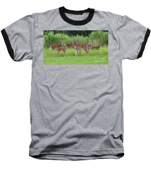 Whitetail Deer Gathering Baseball T-Shirt by Myrna Bradshaw