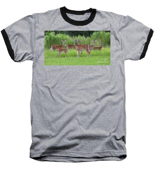 Whitetail Deer Gathering Baseball T-Shirt