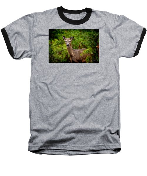 Whitetail In The Pines Baseball T-Shirt