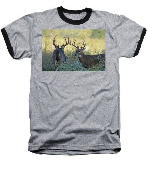 Whitetail Standoff Baseball T-Shirt