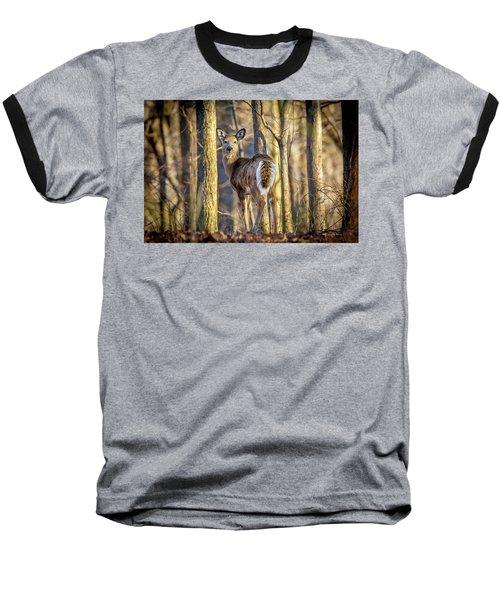 Whitetail Winter Morning Baseball T-Shirt