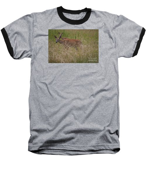Whitetail With Fawn 20120707_09a Baseball T-Shirt