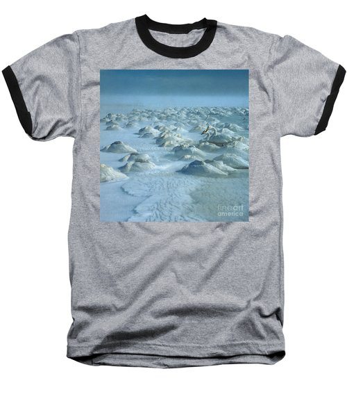 Whooper Swans In Snow Baseball T-Shirt