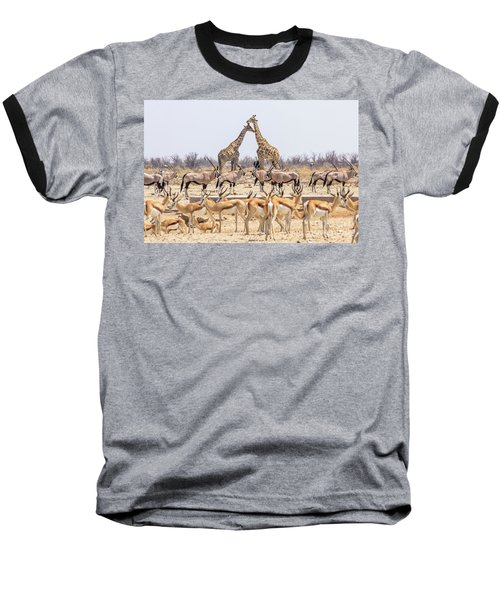 Wild Animals Pyramid Baseball T-Shirt