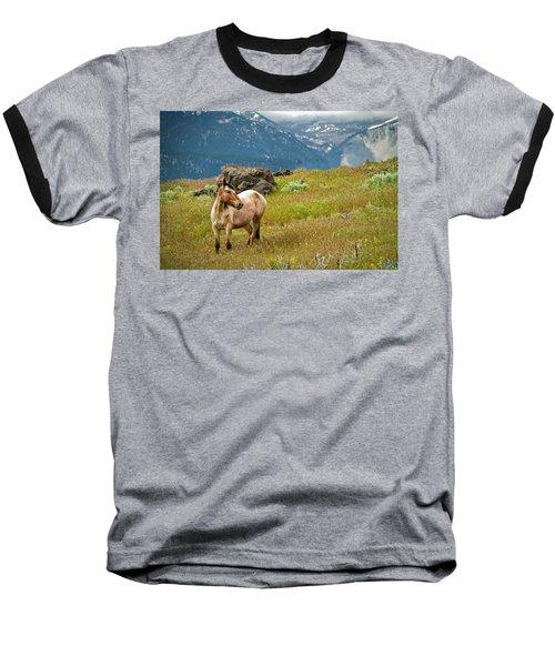 Wild Appaloosa Horse Baseball T-Shirt