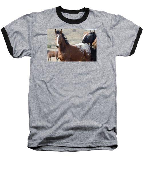 Wild Appaloosa Mustang Horse Baseball T-Shirt