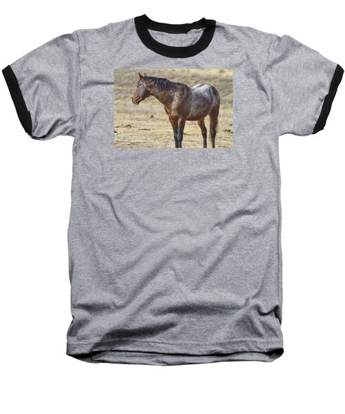 Wild Appaloosa Mustang Stallion Baseball T-Shirt