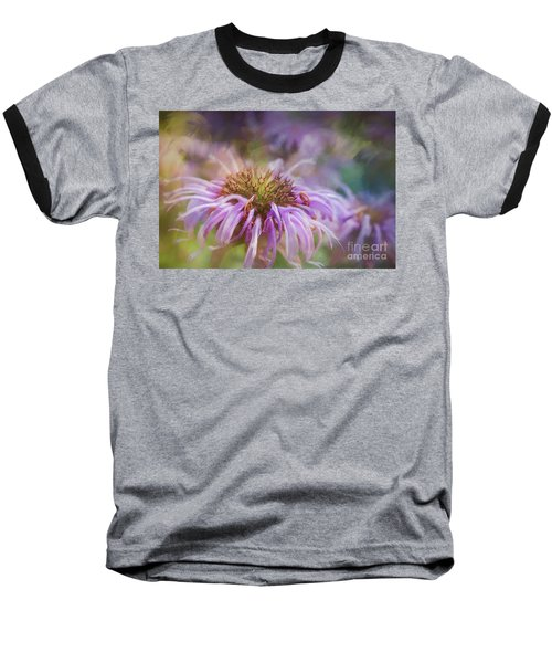 Wild Bergamot Baseball T-Shirt