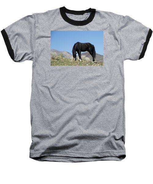 Wild Black Stallion Horse Baseball T-Shirt