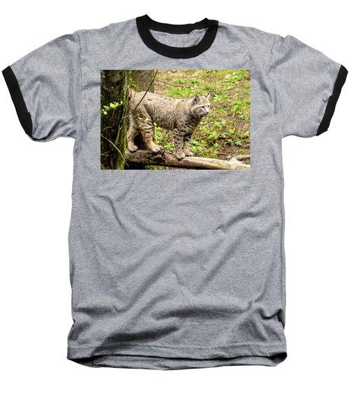 Wild Bobcat Baseball T-Shirt by Teri Virbickis