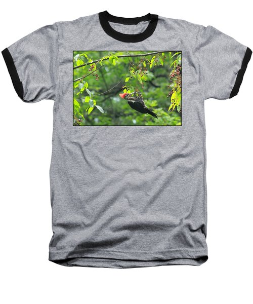 Baseball T-Shirt featuring the photograph Wild Cherry Snack by Tammy Schneider