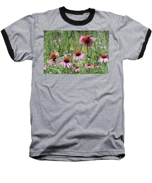 Wild Coneflowers Baseball T-Shirt