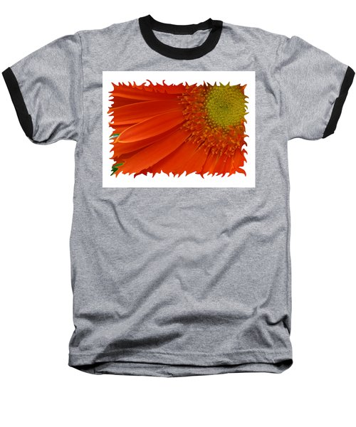 Wild Daisy Baseball T-Shirt by Shari Jardina