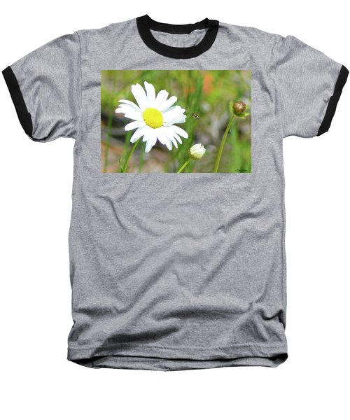 Wild Daisy With Visitor Baseball T-Shirt