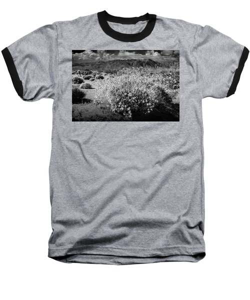 Baseball T-Shirt featuring the photograph Wild Desert Flowers Blooming In Black And White In The Anza-borrego Desert State Park by Randall Nyhof