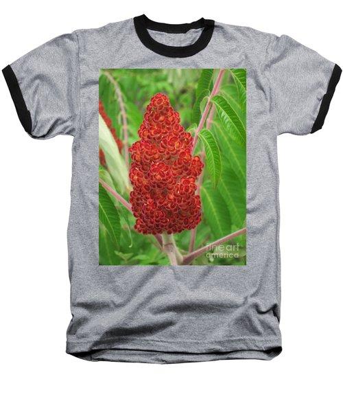 Wild Flowers 11 Baseball T-Shirt