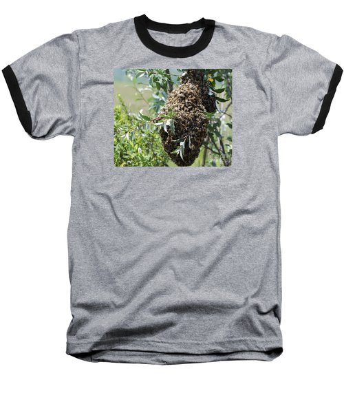 Baseball T-Shirt featuring the photograph Wild Honey Bees by Randy Bodkins