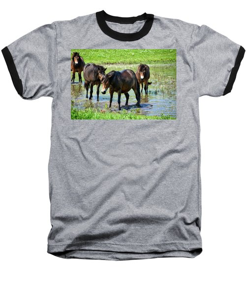 Wild Horses 4 Baseball T-Shirt