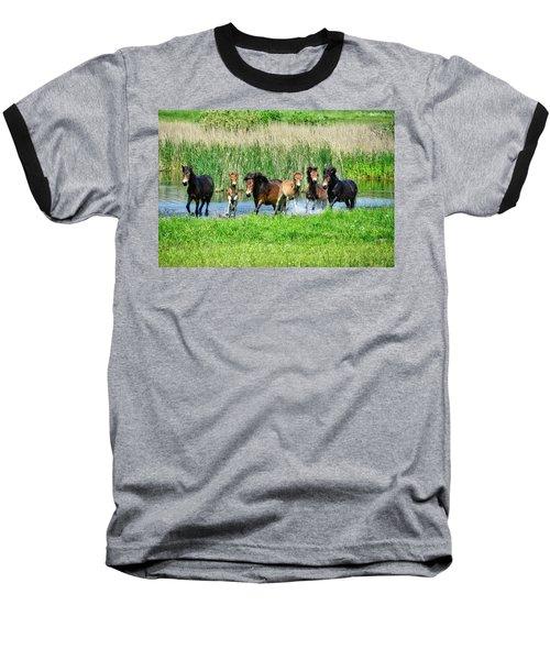 Wild Horses 6 Baseball T-Shirt