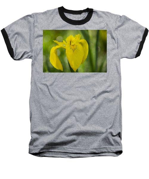 Wild Yellow Iris Baseball T-Shirt