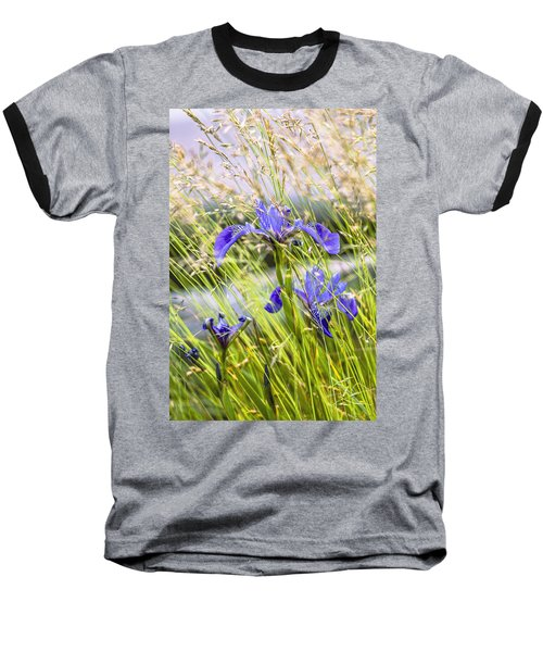 Wild Irises Baseball T-Shirt by Marty Saccone
