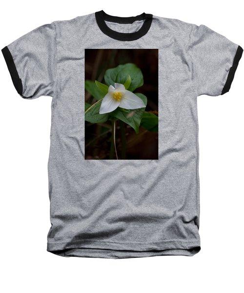 Wild Lily Baseball T-Shirt by Adria Trail