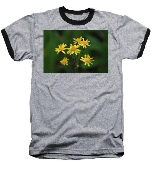 Baseball T-Shirt featuring the photograph Wild Meadow Daisies by LeeAnn McLaneGoetz McLaneGoetzStudioLLCcom