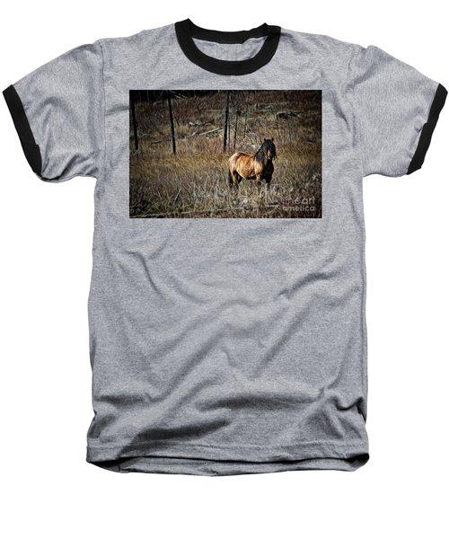 Wild Mustang Baseball T-Shirt