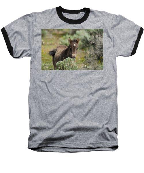 Wild Mustang Foal Baseball T-Shirt
