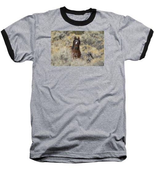 Wild Mustang Stallion Baseball T-Shirt