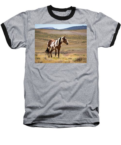 Wild Mustang Stallion Picasso Of Sand Wash Basin Baseball T-Shirt