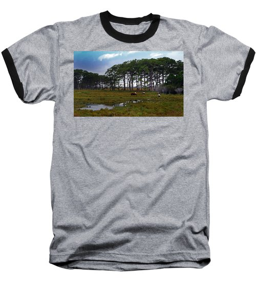 Wild Ponies Of Assateague Baseball T-Shirt
