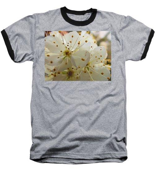 Wild Sand Plum  Baseball T-Shirt