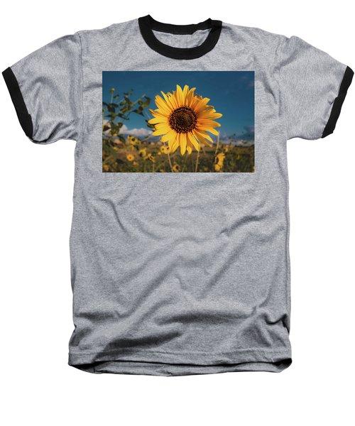 Wild Sunflower Baseball T-Shirt by Jay Stockhaus