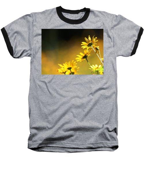 Wild Sunflowers Stony Brook New York Baseball T-Shirt by Bob Savage