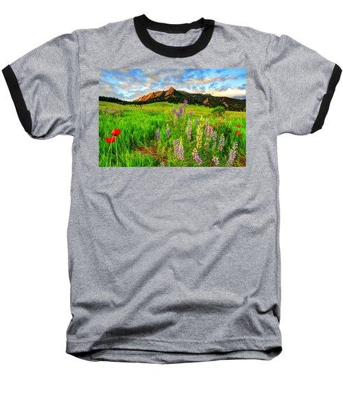 Wildflower Mix Baseball T-Shirt by Scott Mahon