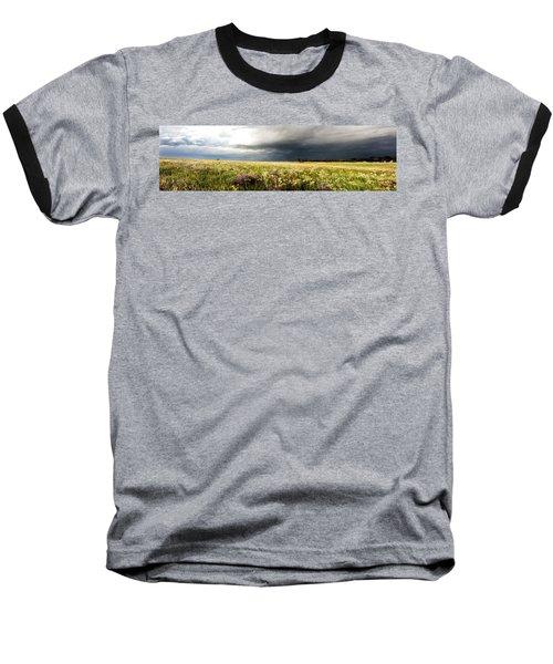 Wildflower Panorama 2008 Baseball T-Shirt