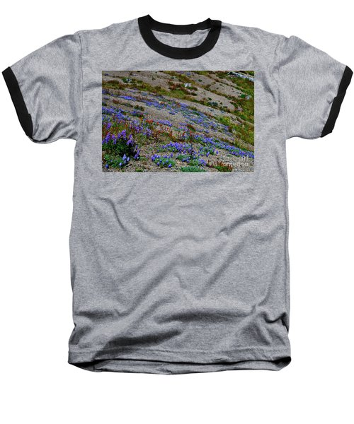 Wildflowers Baseball T-Shirt by Ansel Price