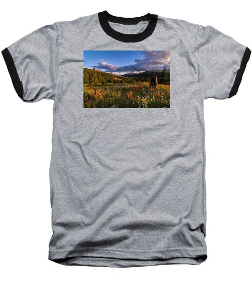 Wildflowers In The Evening Sun Baseball T-Shirt by Michael J Bauer