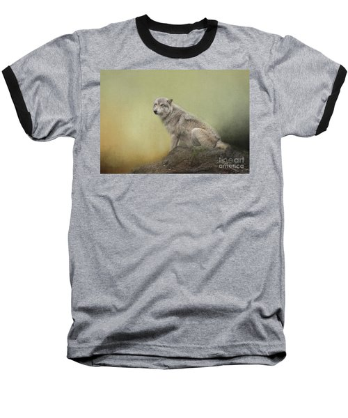 Wildlife Alaska Baseball T-Shirt