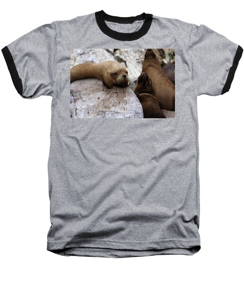 Baseball T-Shirt featuring the photograph Wildlife Of The Ballestas Islands by Aidan Moran