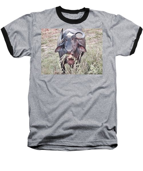 Wilds Of Buffalo Baseball T-Shirt