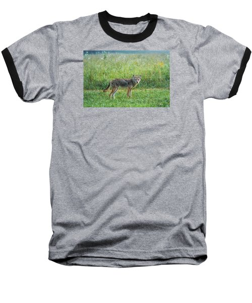 Baseball T-Shirt featuring the photograph Wiley by Jessica Brawley