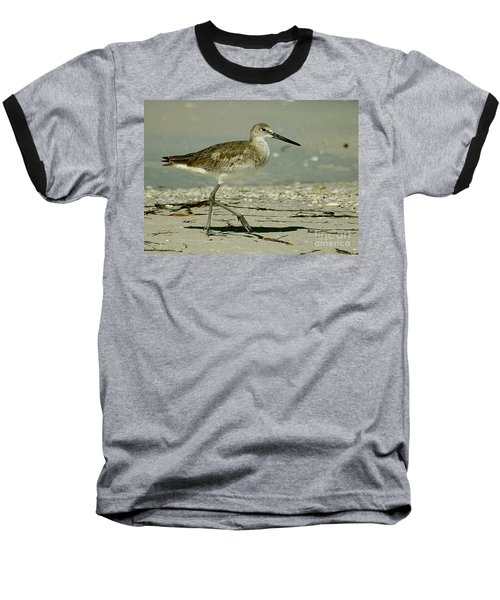 Willet At The Shoreline Baseball T-Shirt by Myrna Bradshaw