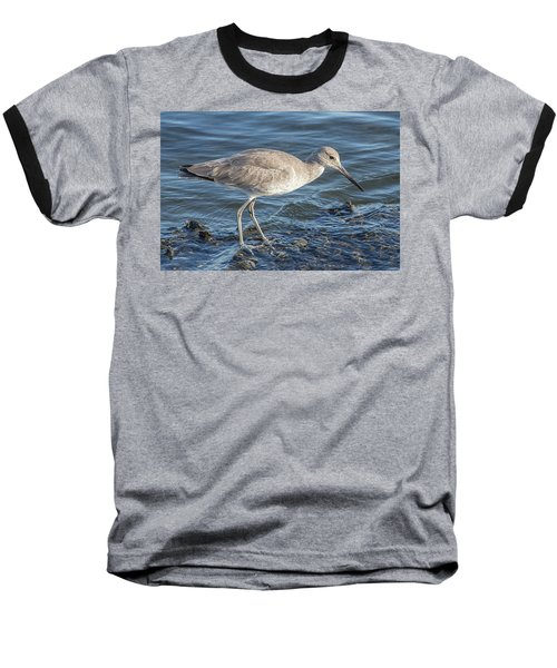 Willet In Winter Plumage Baseball T-Shirt