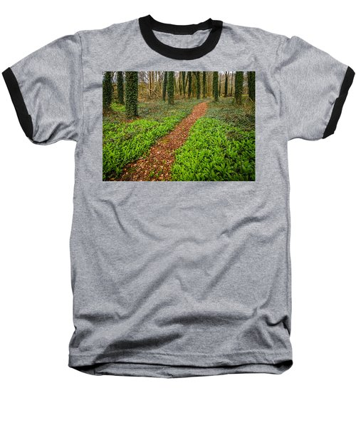 William Butler Yeats Woods Of Coole Park Baseball T-Shirt
